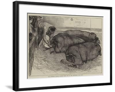 A Finishing Touch, a Sketch from Life at the Smithfield Club Show-William Small-Framed Giclee Print