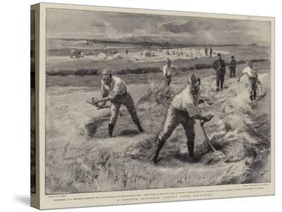 A Coveted Privilege, Convict Gangs Haymaking-William Small-Stretched Canvas Print