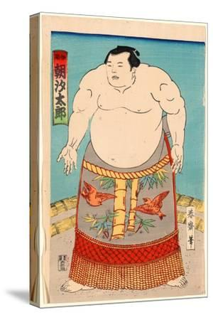 Asashio Taro--Stretched Canvas Print