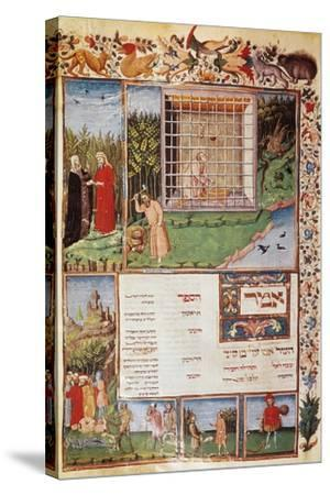 Avicenna (980-1037)--Stretched Canvas Print