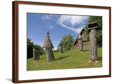 Carved Hives--Framed Photographic Print