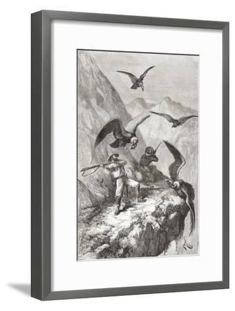 Édouard François André and Companion Being Attacked by Condors Near Calacali--Framed Giclee Print