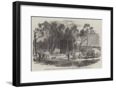 Gold in Australia--Framed Giclee Print