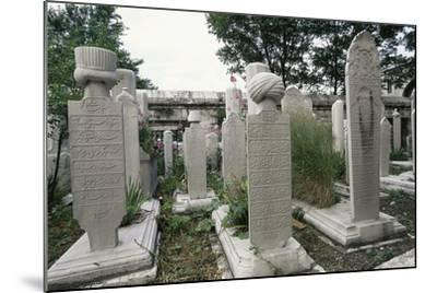 Graves in Cemetery of Suleymaniye Mosque (Suleymaniye Camii)--Mounted Photographic Print