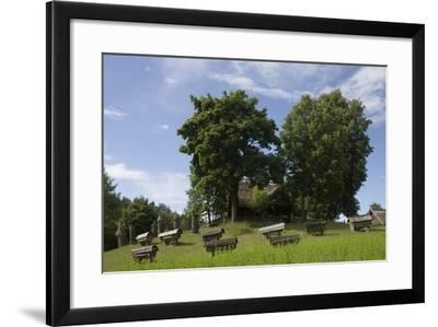 Hives in Lithuanian Museum of Ancient Beekeeping in Stripeikiai Village--Framed Photographic Print
