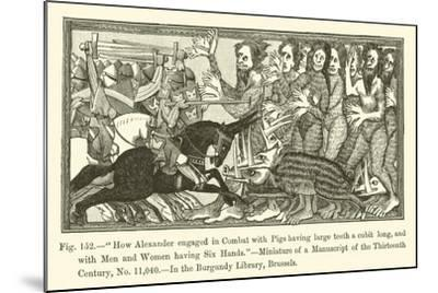 How Alexander Engaged in Combat with Pigs Having Large Teeth a Cubit Long--Mounted Giclee Print