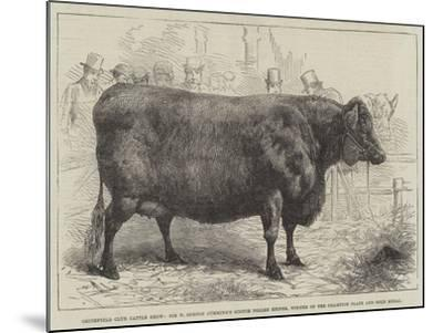 Smithfield Club Cattle Show--Mounted Giclee Print