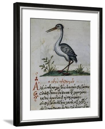 Treatise on Crane--Framed Giclee Print