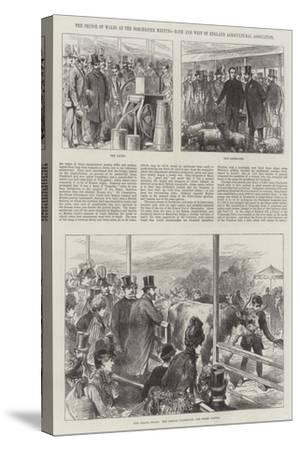 The Prince of Wales at the Dorchester Meeting, Bath and West of England Agricultural Association--Stretched Canvas Print