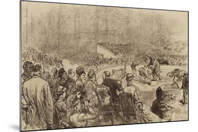Visit of the Prince and Princess of Wales and the King and Queen of Greece, 1876--Mounted Giclee Print