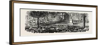 Franco-Prussian War: the Last in the Luxembourg Gardens Housed Sheep, France--Framed Giclee Print