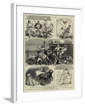 The Rebellion in the Soudan, with Baker Pasha's Reinforcements, from Suez to Suakim by the Red Sea--Framed Giclee Print