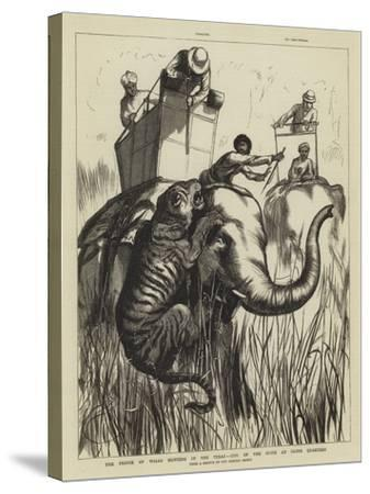 The Prince of Wales Hunting in the Terai, One of the Suite at Close Quarters--Stretched Canvas Print