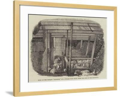 Hold of the Barque Eleanor, on a Voyage with Stock from the Cape to the Mauritius--Framed Giclee Print