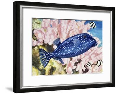 Spotted Boxfish or Spotted Trunkfish (Ostracion Lentiginosus or Ostracion Meleagris), Ostraciidae--Framed Giclee Print