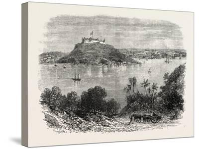 Havannah Harbour, Showing Where the Fifty Invaders Were Shot, 1870S--Stretched Canvas Print
