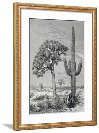 Arizona Desert Landscape with Cactus and Yucca Plants, USA, 19th Century--Framed Giclee Print