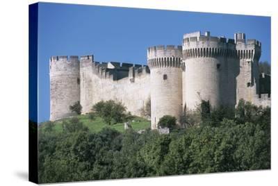 Trees in Front of a Castle, Fort Saint Andre, Languedoc-Roussillon, Villeneuve-Les-Avignon, France--Stretched Canvas Print