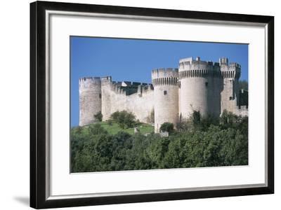 Trees in Front of a Castle, Fort Saint Andre, Languedoc-Roussillon, Villeneuve-Les-Avignon, France--Framed Photographic Print