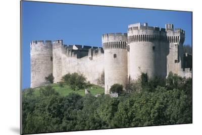 Trees in Front of a Castle, Fort Saint Andre, Languedoc-Roussillon, Villeneuve-Les-Avignon, France--Mounted Photographic Print