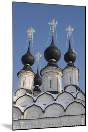 The Domes of the Winter Church of St Antipas, 1745, Suzdal, Golden Ring, Russia--Mounted Photographic Print