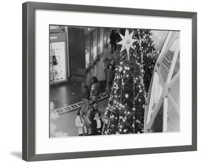 A Tree Topped with a Large Star on Display During the Christmas around the World Exhibit--Framed Photographic Print