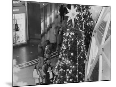 A Tree Topped with a Large Star on Display During the Christmas around the World Exhibit--Mounted Photographic Print