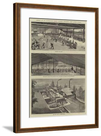 Scenes at an Australian Sheep Station, Collaroy, New South Wales--Framed Giclee Print