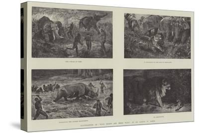Illustrations of Wild Beasts and their Ways, by Sir Samuel W Baker--Stretched Canvas Print