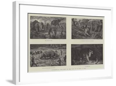 Illustrations of Wild Beasts and their Ways, by Sir Samuel W Baker--Framed Giclee Print