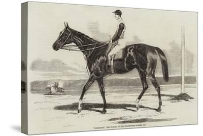 Vengeance, the Winner of the Cesarewitch Stakes, 1856--Stretched Canvas Print