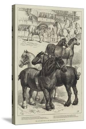 The Cart-Horse Show at the Agricultural Hall--Stretched Canvas Print