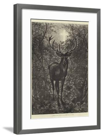 A Christmas Legend, the Stag of St Hubert--Framed Giclee Print
