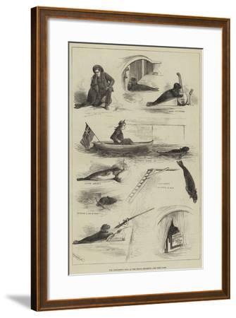 The Performing Seal at the Royal Aquarium--Framed Giclee Print
