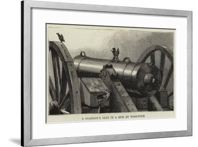 A Sparrow's Nest in a Gun at Woolwich--Framed Giclee Print