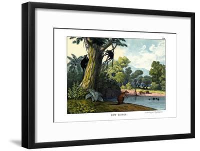 Dendrolagus and Hypsiprymnus, 1860--Framed Giclee Print