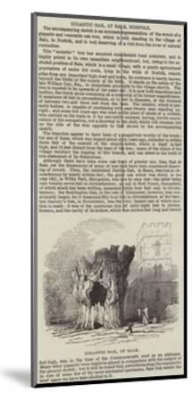 Gigantic Oak, at Bale, Norfolk--Mounted Giclee Print