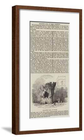 Gigantic Oak, at Bale, Norfolk--Framed Giclee Print