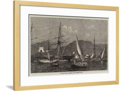 Loading Fruit at Smyrna--Framed Giclee Print