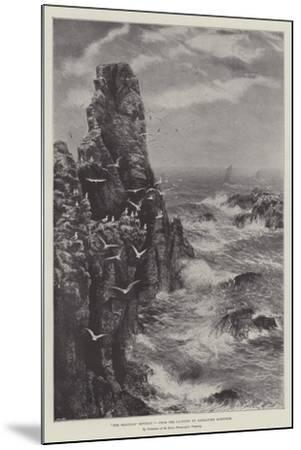 The Seagulls' Retreat--Mounted Giclee Print