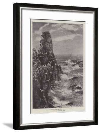 The Seagulls' Retreat--Framed Giclee Print