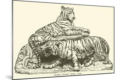 Tigers before their Lair--Mounted Giclee Print