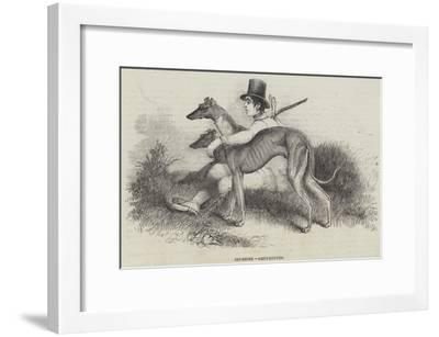 Coursing, Greyhounds--Framed Giclee Print