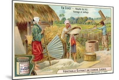 Winnowing and Threshing Harvested Rice, Korea--Mounted Giclee Print