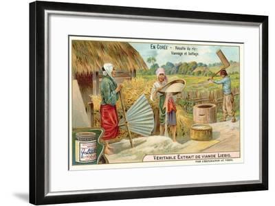 Winnowing and Threshing Harvested Rice, Korea--Framed Giclee Print