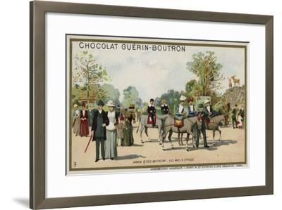 African Donkeys, Jardin D'Acclimation, Paris--Framed Giclee Print