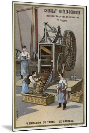 Tobacco Manufacturing. Shredding Leaves--Mounted Giclee Print