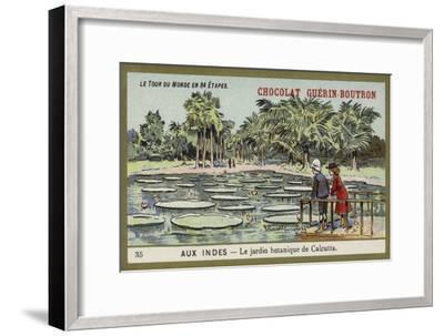 The Botanical Gardens, Calcutta, India--Framed Premium Giclee Print