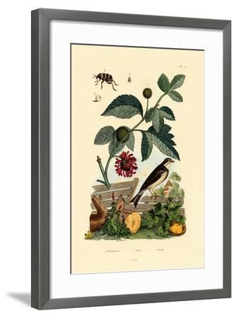 Paper Mulberry, 1833-39--Framed Giclee Print