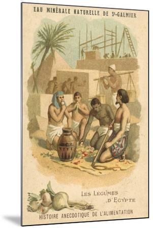 The Vegetables of Egypt--Mounted Giclee Print